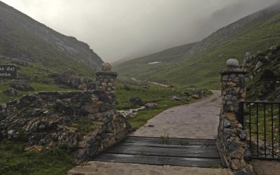 Subida a los Puertos de Áliva de la Virgen de la Salud y el ganado