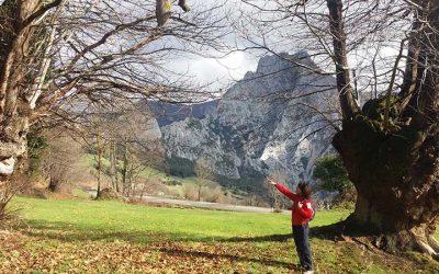 Rutas en Liébana: ruta Castañar de Aravalle