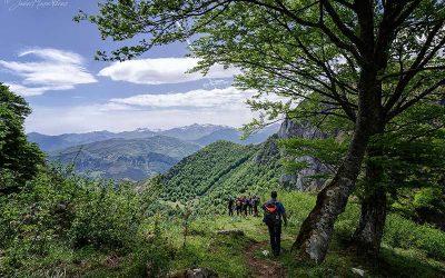 Rutas en Liébana: ruta Hayedo de Edes