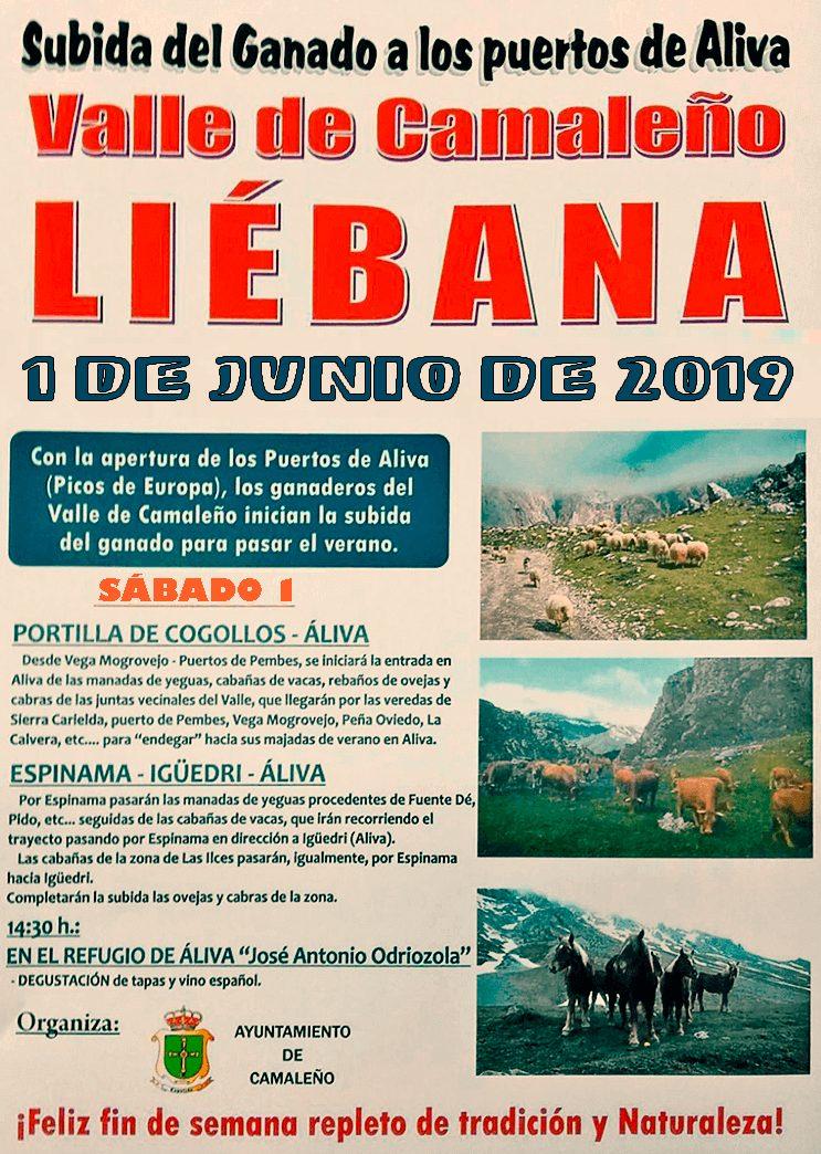 cartel 2019 subida ganado a los puertos de aliva