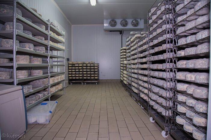 camara queseria quesos baro - ruta gastronomica liebana- hostal remona