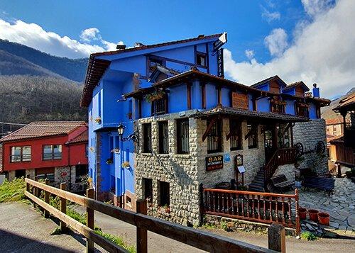 hostal remona color azul - visita ganaderia vacas